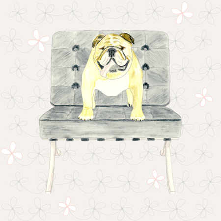 PETS ON FAMOUS FURNITURE